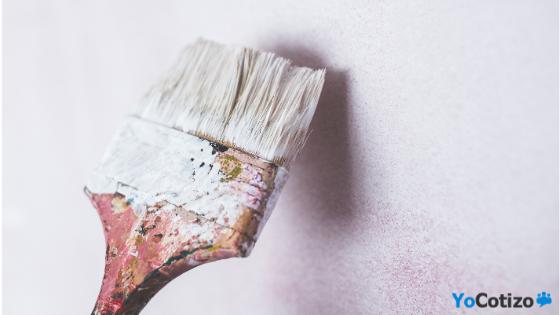 Pinta tu hogar